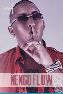 nengoFlow